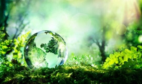 Duurzaamheid en Circulariteit Uitje Amsterdam