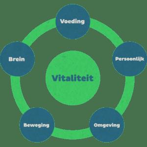 Vitaliteits thema's Bedrijf School