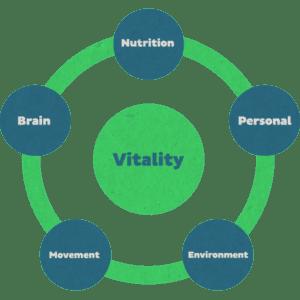 Vitality theme's company school