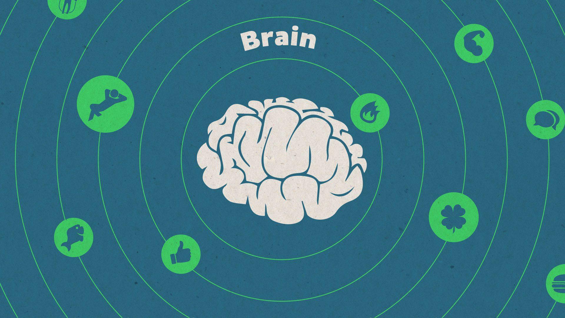 Online Energizer Brain