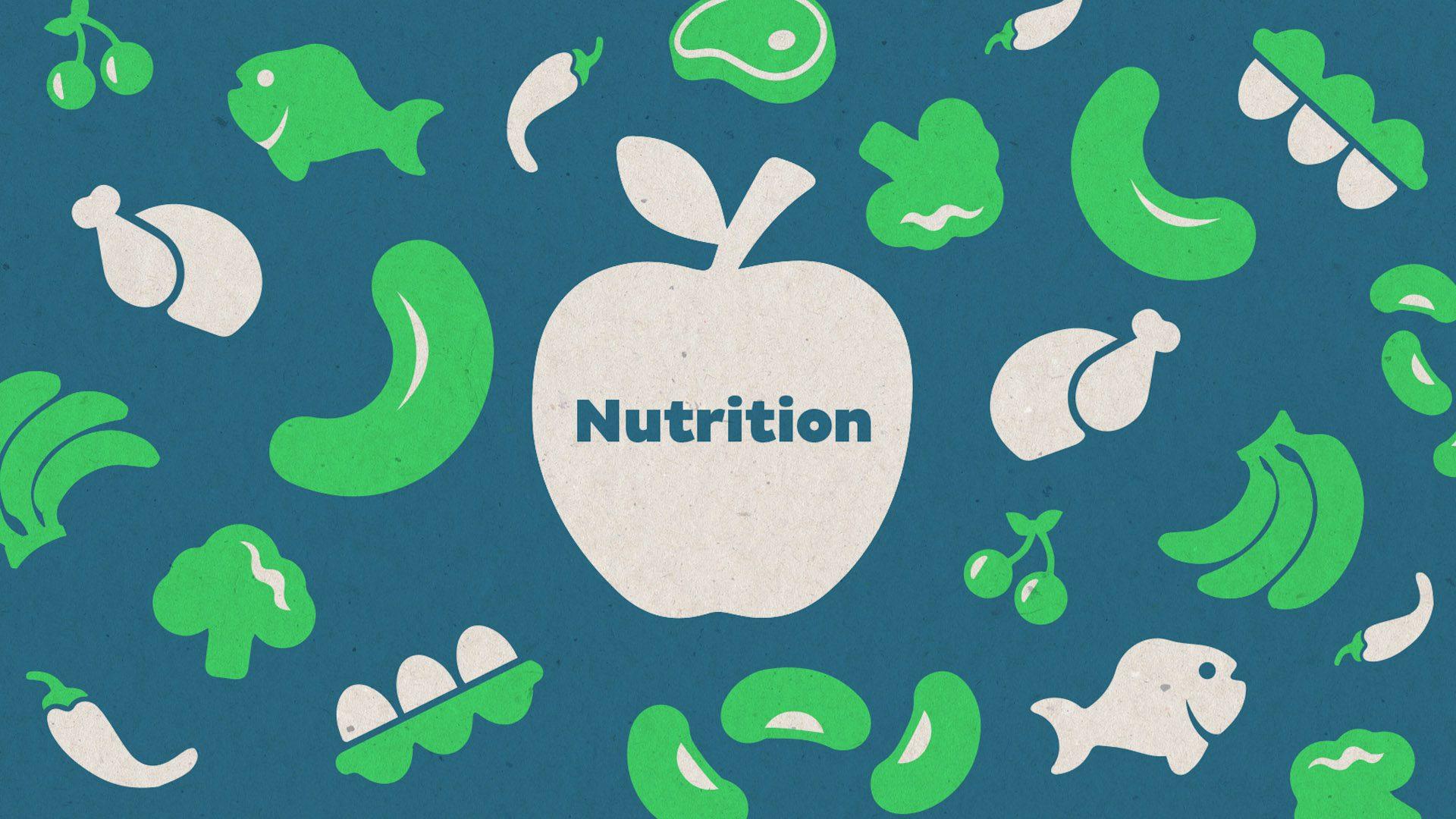 Online Energizer Nutricion